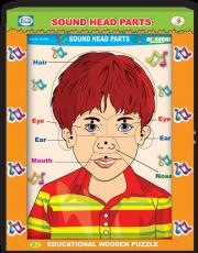 أقسام الرأس الصوتية وجه ولد إنكليزي