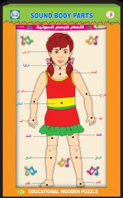 أقسام الجسم الصوتية جسم أنثى عربي